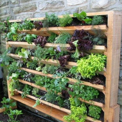 Vertical gardens work for smaller or shared offices.