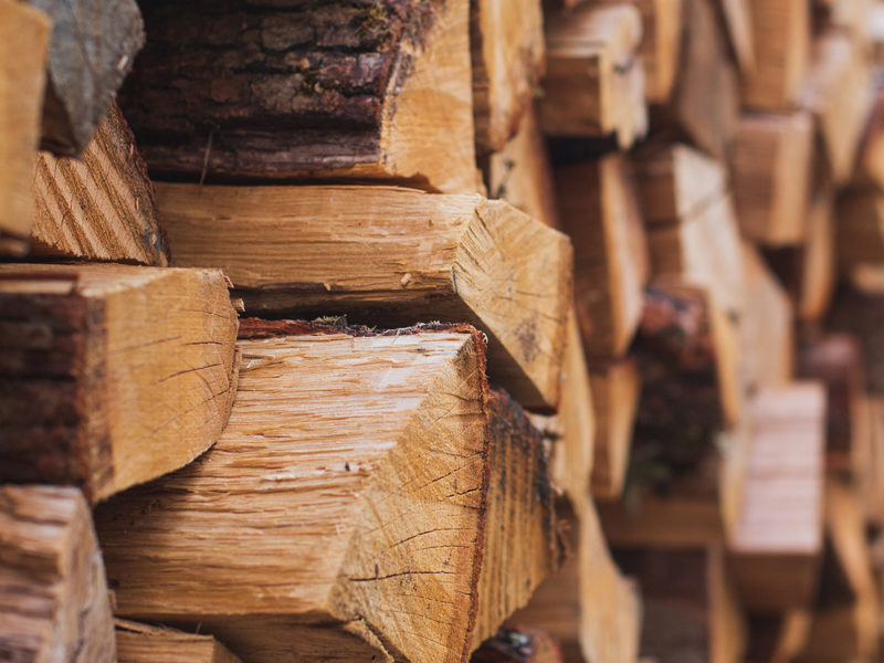 best types of firewood