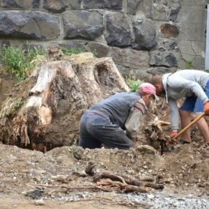 One stump removal method is to get your hands dirty and dig it out by hand. It isn't easy.