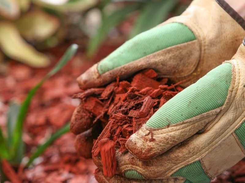 Adding mulch to your landscape provides many benefits in Ann Arbor MI