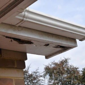 damage due to gutters