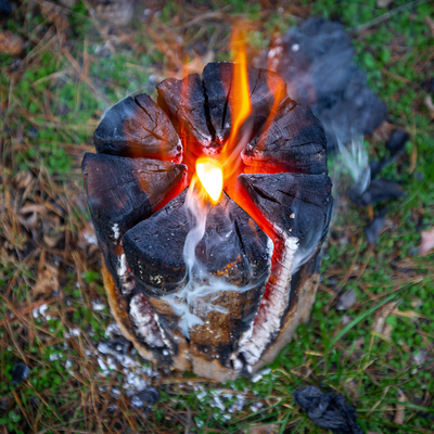 stump burning